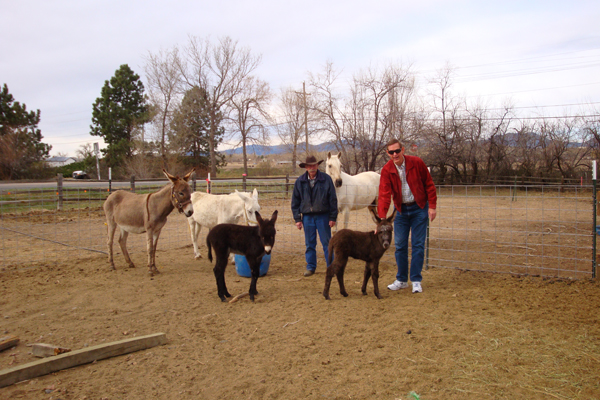 George and his donkeys.